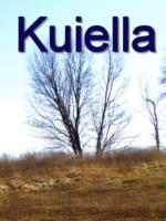 Kuiella Taldama: my journey - book cover